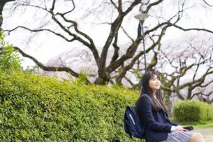 桜と女子学生の写真素材 [FYI04788859]