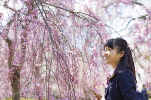 桜と女子学生の写真素材 [FYI04788881]