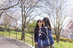 立ち話をする女子学生2人の写真素材 [FYI04788896]