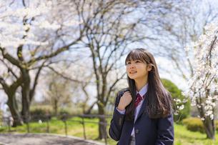 桜と女子学生の写真素材 [FYI04788898]