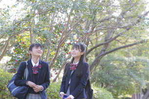 通学する女子学生2人の写真素材 [FYI04788905]