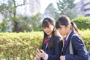 女子学生2人の写真素材 [FYI04788911]
