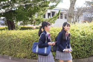 通学する女子学生2人の写真素材 [FYI04788913]