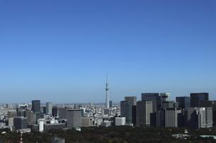 東京紀尾井町から見える丸の内方面の高層ビル群の写真素材 [FYI04789003]