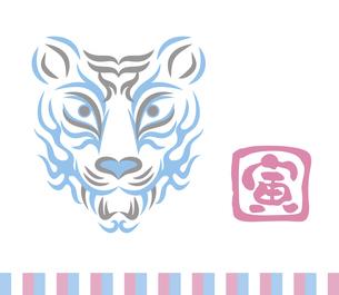 虎の顔のデザイン 日本の伝統芸能 歌舞伎の舞台メイク 隈取り イラストのイラスト素材 [FYI04789247]