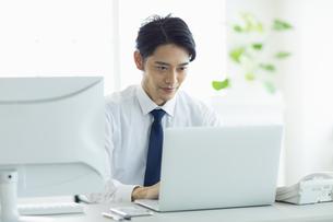 ビジネスオフィスでパソコンに向き合う男性の写真素材 [FYI04789365]