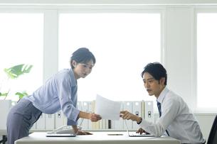 向かい合わせのデスクで仕事する男女の写真素材 [FYI04789413]