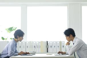 向かい合わせのデスクで仕事する男女の写真素材 [FYI04789414]