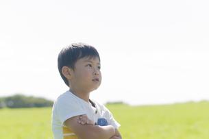 草原で腕を組む男の子の写真素材 [FYI04789441]