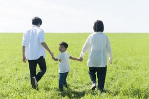 草原を歩くファミリーの写真素材 [FYI04789442]