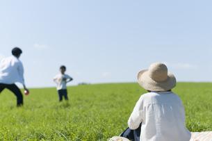 草原で遊ぶファミリーの写真素材 [FYI04789481]