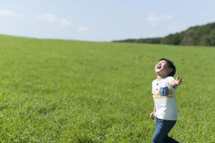 草原で空を見上げる子供の写真素材 [FYI04789482]