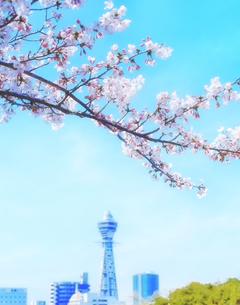 桜と通天閣の写真素材 [FYI04789749]