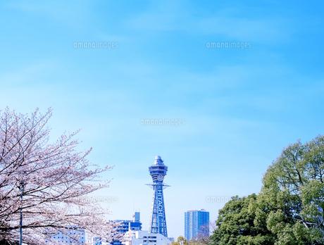 通天閣と桜の写真素材 [FYI04789754]