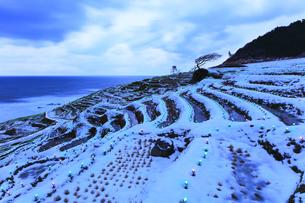 雪の能登半島 白米千枚田あぜのきらめき夕景の写真素材 [FYI04789828]