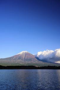 静岡県 田貫湖より望む富士山の写真素材 [FYI04789992]