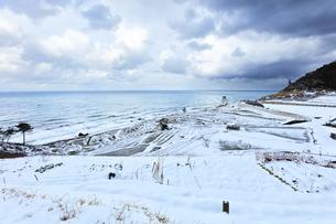 冬の能登半島 白米千枚田に雪の写真素材 [FYI04790167]