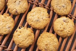 フルーツグラノーラクッキーの写真素材 [FYI04790178]
