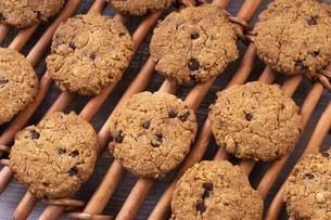チョコチップクッキーの写真素材 [FYI04790179]