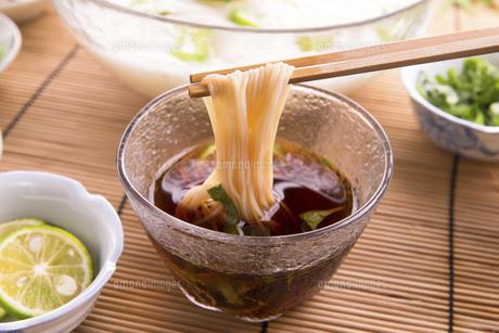 素麺の写真素材 [FYI04790210]