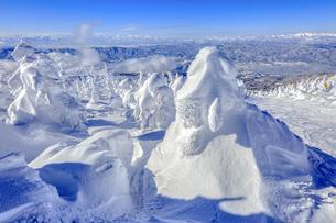 山形蔵王の樹氷の写真素材 [FYI04790764]