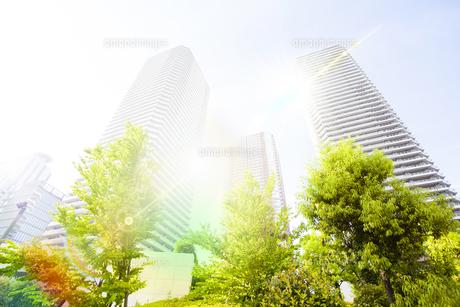 朝日に包まれる武蔵小杉の高層マンション群の写真素材 [FYI04790912]