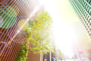 朝日に包まれる武蔵小杉の高層マンション群の写真素材 [FYI04790914]