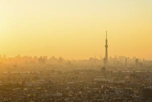 千葉県 東京スカイツリーとビル群の写真素材 [FYI04791200]