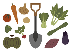 野菜作り イラストのイラスト素材 [FYI04791427]