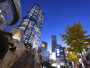 夕暮れの六本木ヒルズ 東京都の写真素材 [FYI04791651]