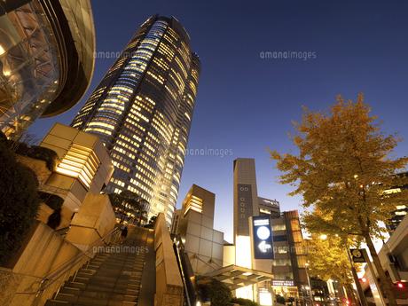 夕暮れの六本木ヒルズ 東京都の写真素材 [FYI04791652]