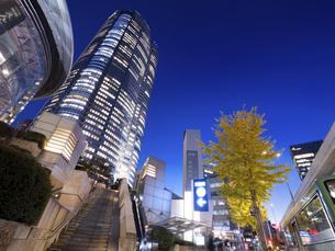 夕暮れの六本木ヒルズ 東京都の写真素材 [FYI04791665]