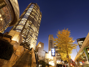 夕暮れの六本木ヒルズ 東京都の写真素材 [FYI04791666]