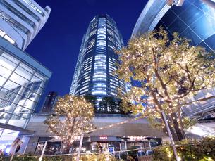 夕暮れの六本木ヒルズ 東京都 の写真素材 [FYI04791674]