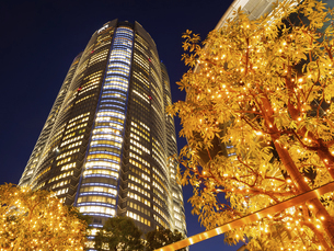 夕暮れの六本木ヒルズ 東京都 の写真素材 [FYI04791679]