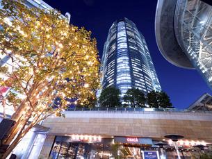 夕暮れの六本木ヒルズ 東京都 の写真素材 [FYI04791681]