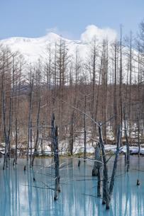 雪が残る春の青い池と冠雪の十勝岳 美瑛町の写真素材 [FYI04791864]