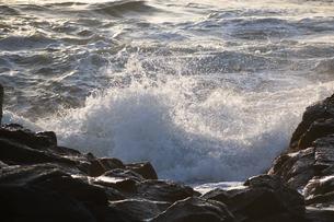 夕陽を受けて輝く波の写真素材 [FYI04791870]