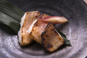 甘鯛の西京焼きの写真素材 [FYI04792081]