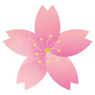 桜のイラスト素材 [FYI04792200]