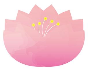 桜のイラスト素材 [FYI04792201]