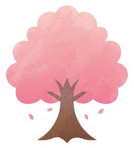 桜の木のイラスト素材 [FYI04792207]