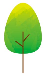 木のイラスト素材 [FYI04792251]