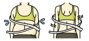 肥満の女性とスリムな女性の背中-メジャーのイラスト素材 [FYI04792459]
