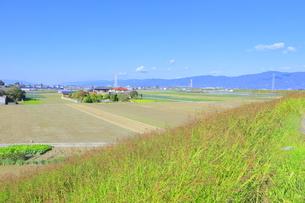 吉野川の右岸の広大な平野の写真素材 [FYI04792546]