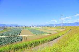 吉野川右岸の広大な平野の写真素材 [FYI04792555]