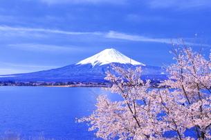 桜の咲く河口湖と富士山の写真素材 [FYI04792556]