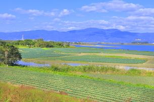 吉野川右岸の広大な河川敷の写真素材 [FYI04792560]