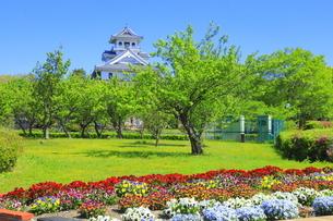 新緑の長浜城の写真素材 [FYI04792571]