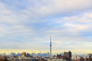東京スカイツリーと街並の写真素材 [FYI04792748]